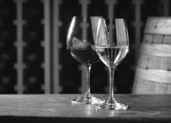 Œnologie: accords mets/vins